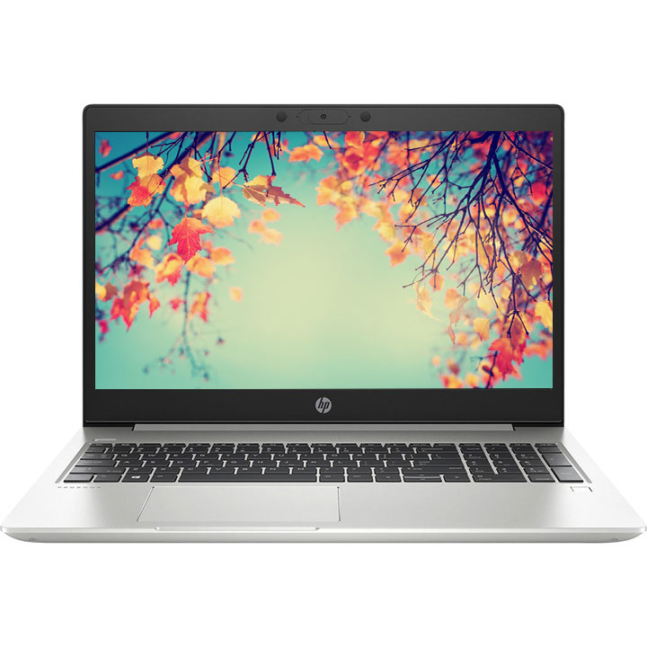 "HP 15.6"" ProBook 455 G7 Laptop (AMD Ryzen 5/16GB RAM/256GB SSD/Win 10)"
